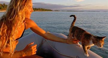 A girl sails across the world in the company of her cat!