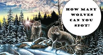 How smart are you? Only 3 in 100 people can find all the wolves in this picture