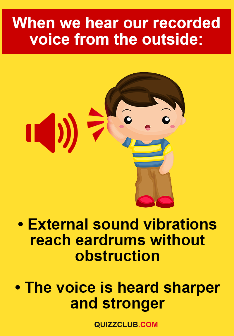 Story: - External sound vibrations reach eardrums without obstruction.  - The voice is heard sharper and stronger.