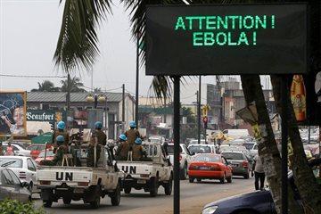 История Story: Вирус Эбола vs Cвиной Грипп