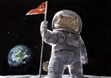 Общество Story: Суеверия космонавтов