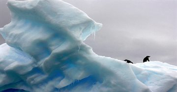 География Story: 9 интересных фактов о льде на нашей планете