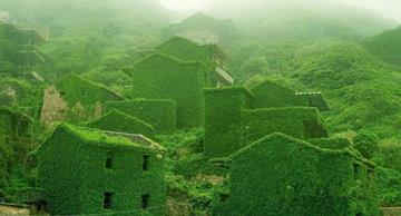 An abandoned Chinese village became a green paradise!
