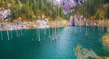 Lake Kaindy: a tremendously beautiful natural phenomenon