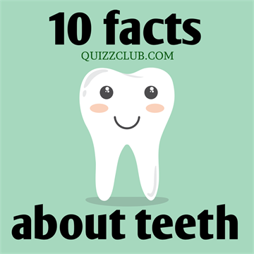 10 interesting facts about teeth