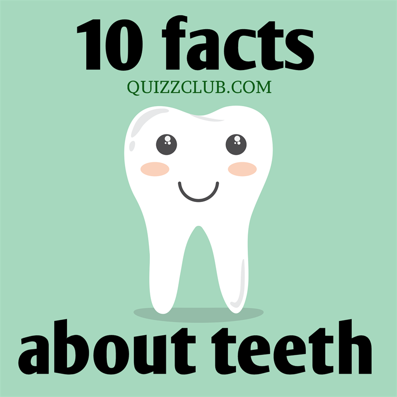 Story: 10 interesting facts about teeth