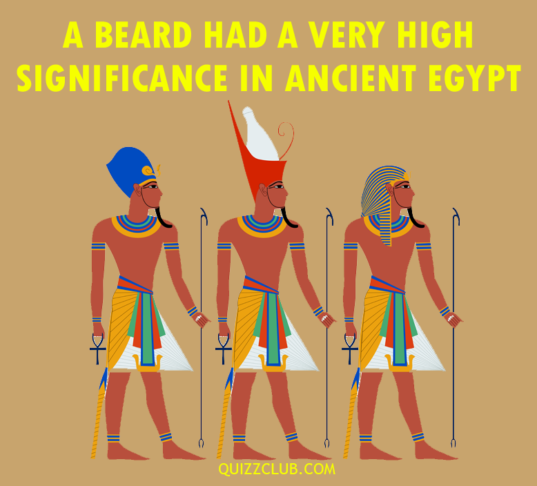 Science Story: Astonishing facts about beards you've never heard before #5