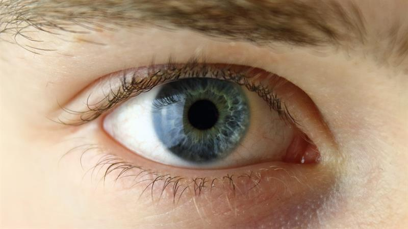 Story: What can your eyes tell?