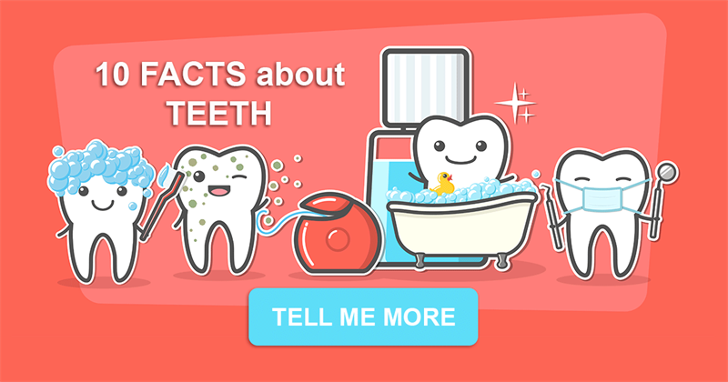 story 10 interesting facts about teeth