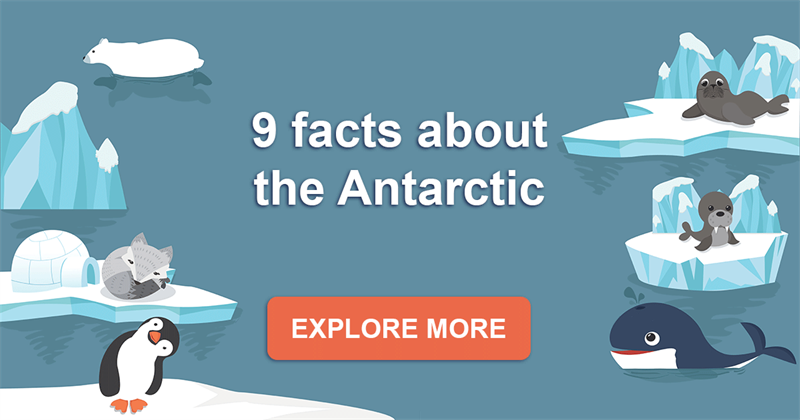 Geography Story: 9 interesting facts about the Antarctic