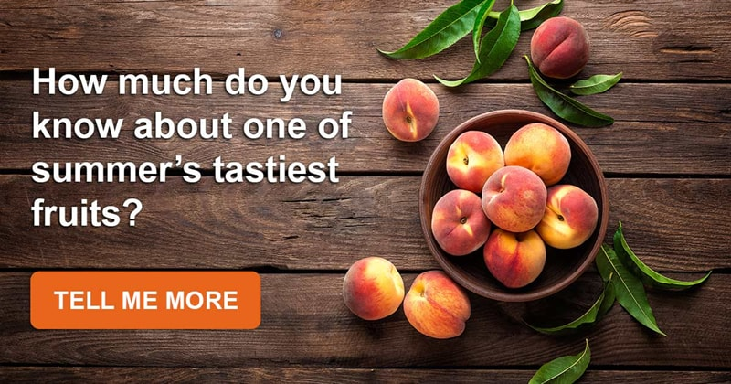 Story: We bet you don't know these amazing facts about sweet and delicious peaches!