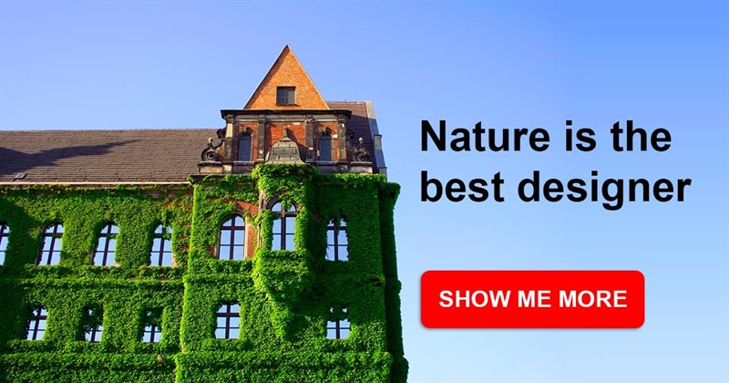 Story: 8 buildings that prove nature is the best designer