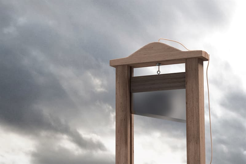 History Story: Is death by guillotine painless?