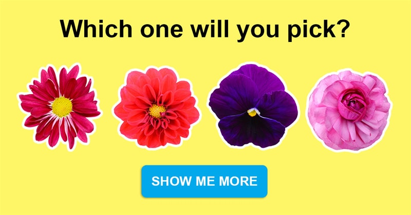 Society Story: The flower you choose will say a lot about your personality