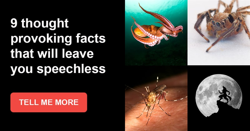 Story: 9 thought provoking facts that will leave you speechless