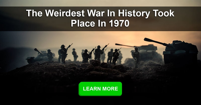 Society Story: What were the weirdest wars in history?