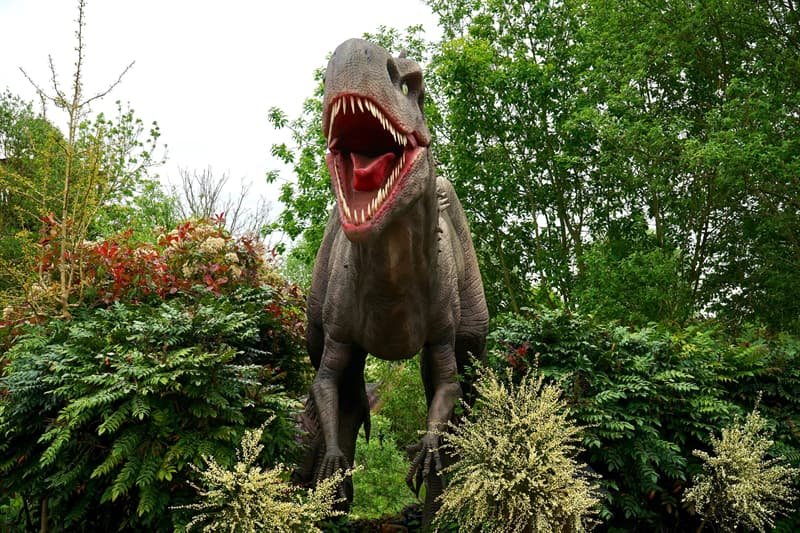 Geography Story: #6 In the age of dinosaurs, a day was 23 hours long. It became longer with time because the speed of the rotation of Earth changed