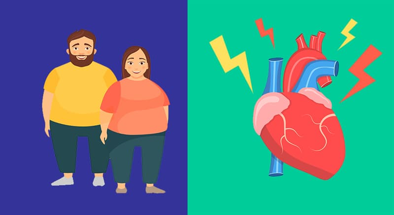 Science Story: #6 Gaining fat affects our vascular system