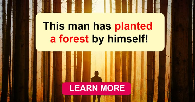 Geography Story: Another story of a true hero: a man who has planted a forest