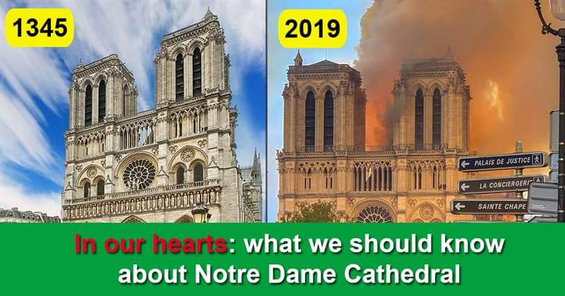 Geography Story: Interesting Facts about Notre Dame Cathedral You Probably Didn't Know
