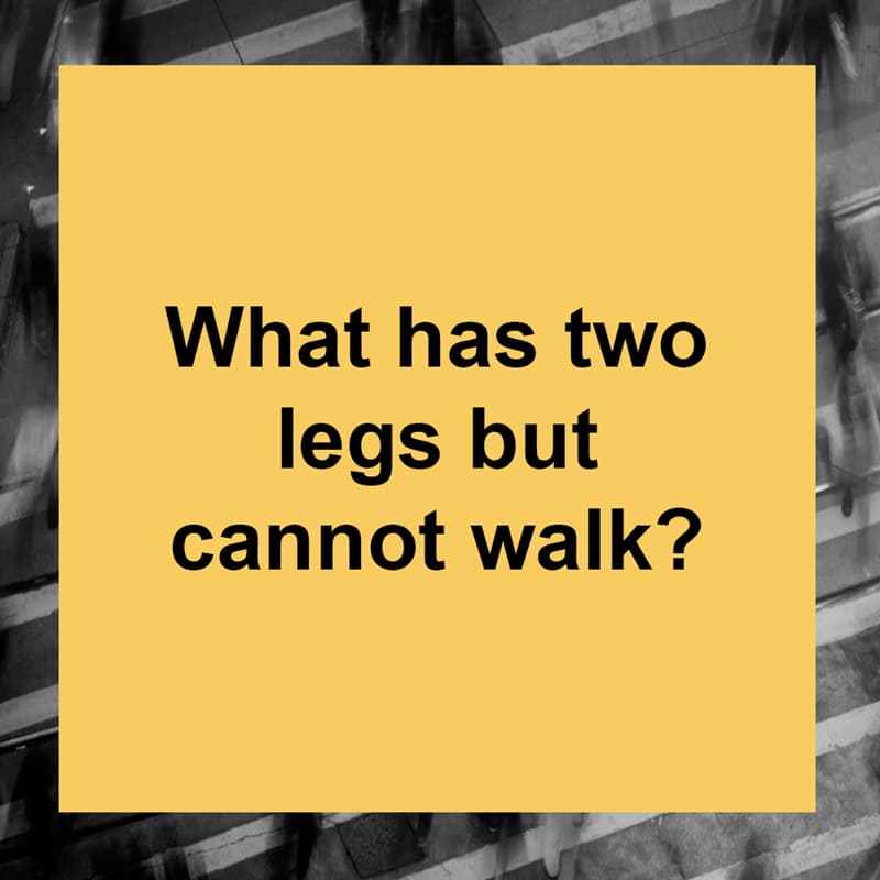 IQ Story: What has two legs but cannot walk?