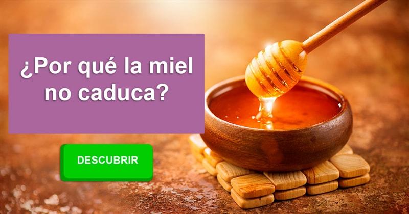 Сiencia Historia: ¿Por qué la miel no caduca?