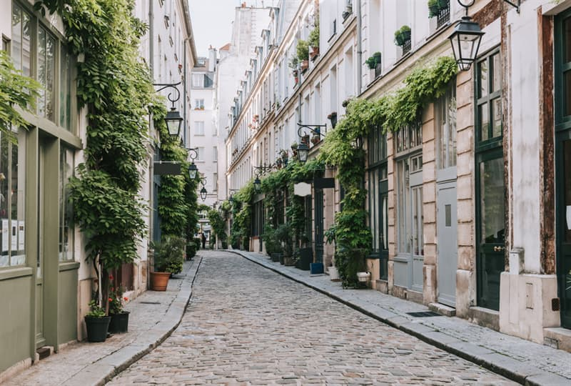 Geography Story: The world of plants: Paris law encourages people to plant gardens around the eternal city