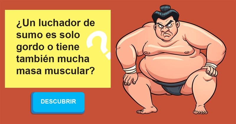 Deporte Historia: ¿Un luchador de sumo es solo gordo o tiene también mucha masa muscular?