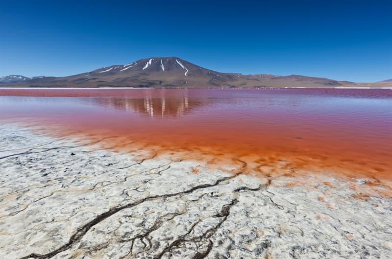 Geography Story: #1 Laguna Colorada, Bolivia