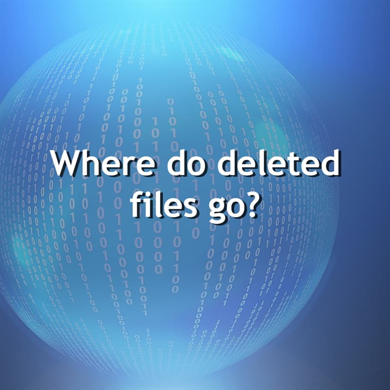 Science Story: Where do deleted files go?