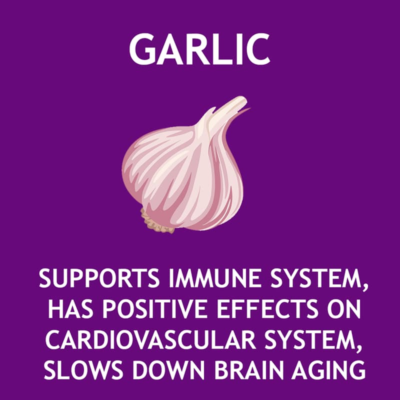 Science Story: Garlic supports immune system, has positive effects on cardiovascular system, slows down brain aging