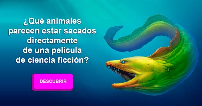 Сiencia Historia: ¿Qué animales parecen estar sacados directamente de una película de ciencia ficción?