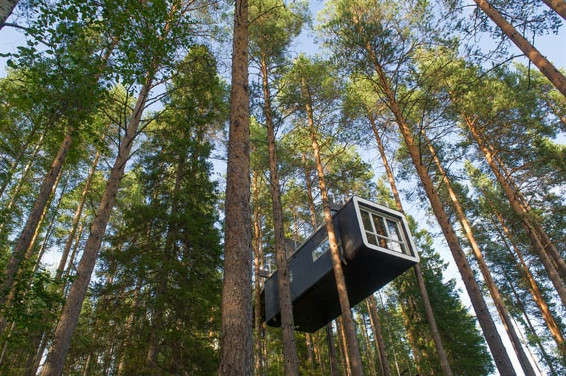 Society Story: #7 Modern Treehouse in Sweden