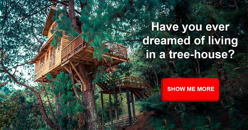 Society Story: The most incredible treehouses in the world