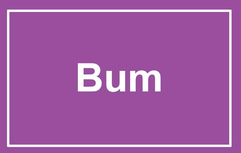Society Story: Bum