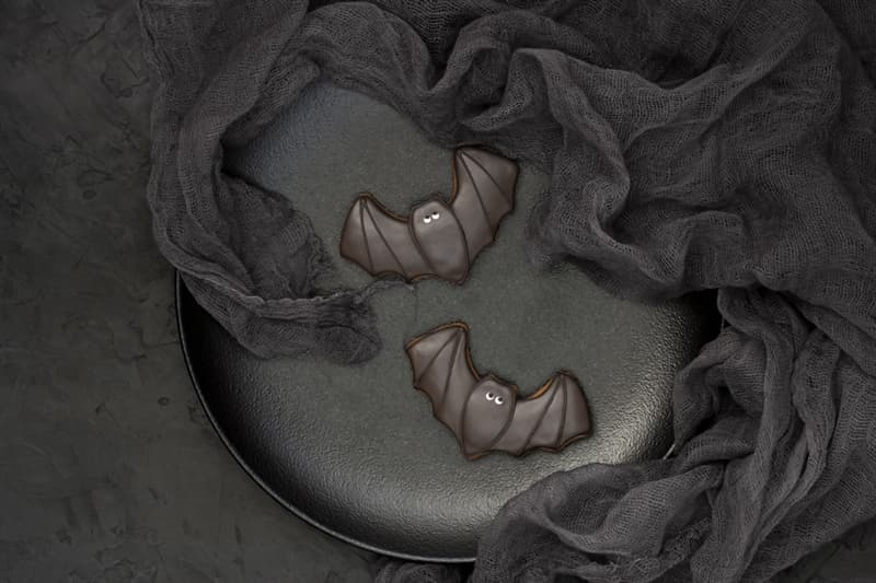 Culture Story: #2 Chocolate Bats