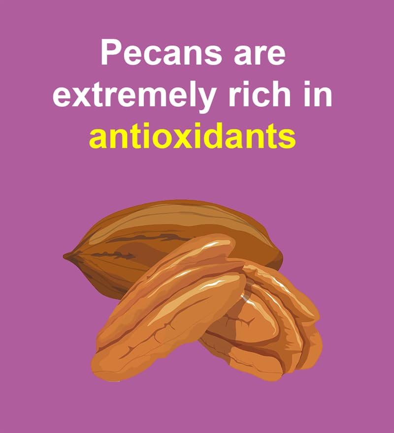 Nature Story: Pecans are extremely rich in antioxidants