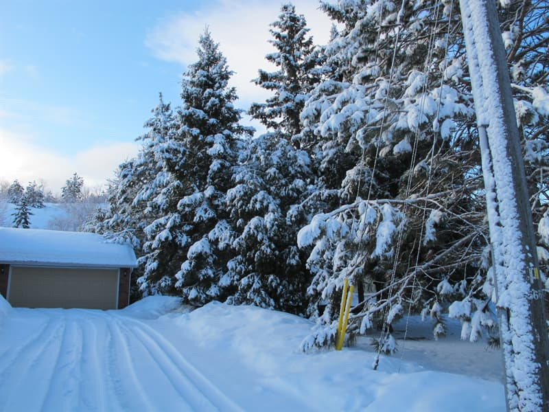 Image result for driveway snow