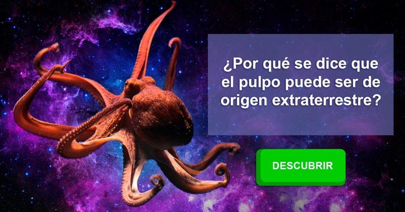 Сiencia Historia: ¿Por qué se dice que el pulpo puede ser de origen extraterrestre?