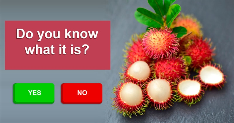 Nature Story: Rarest fruits you should really try at least once