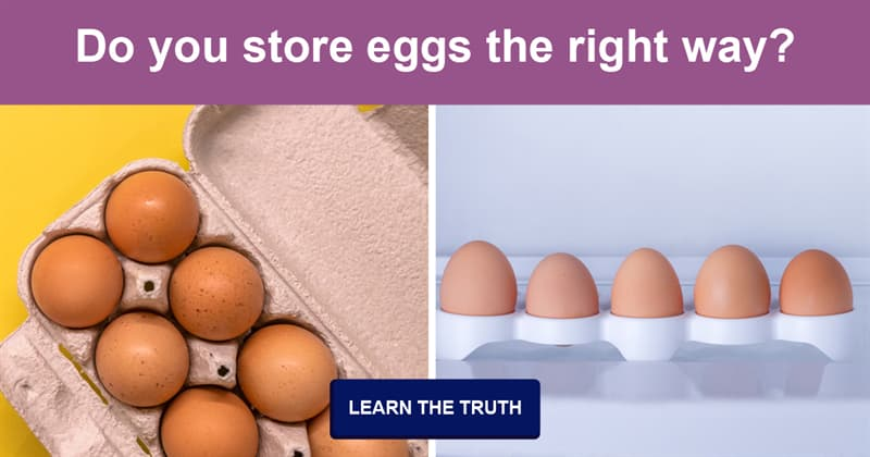 Science Story: To fridge or not to fridge – how should we really store eggs?