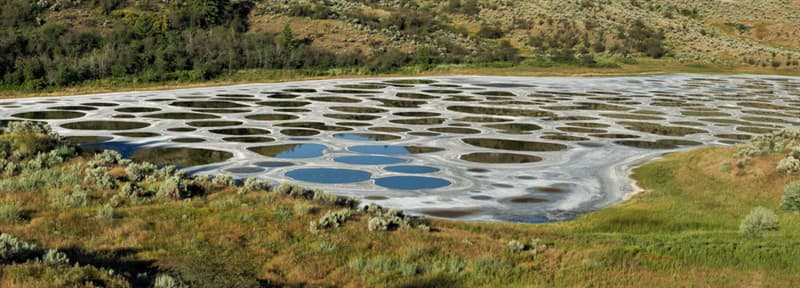 Nature Story: #3 Spotted Lake in Canada