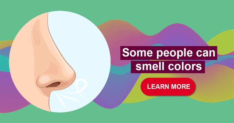 Science Story: 10 bizarre and wonderful facts about the sense of smell
