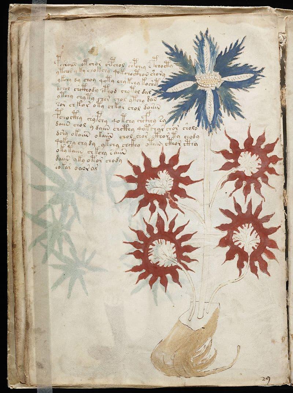 Geography Story: #1 Voynich Manuscript