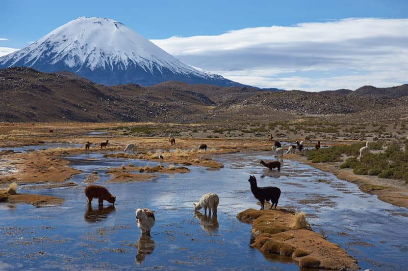 Geography Story: #6 Lauca National Park