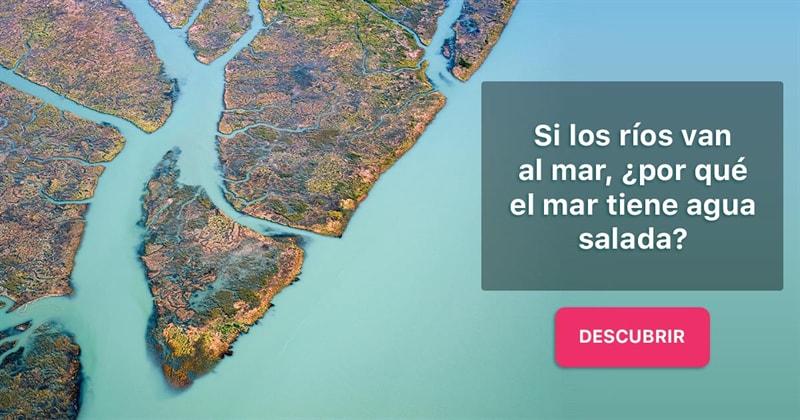 Geografía Historia: Si los ríos van al mar, ¿por qué el mar tiene agua salada?