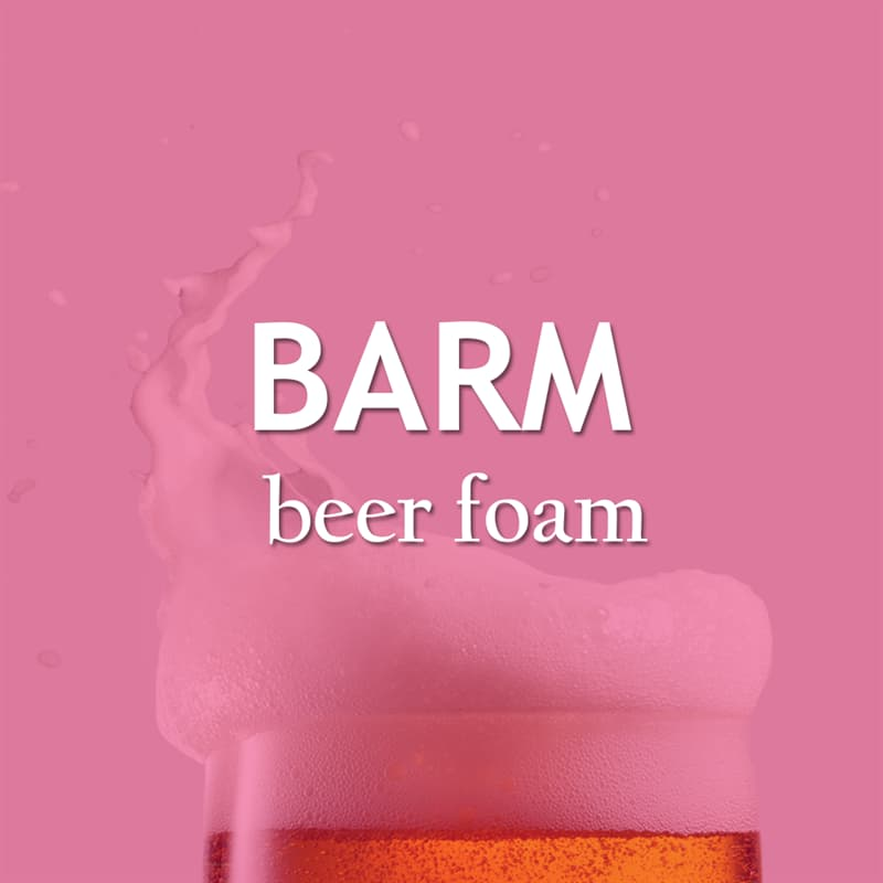 Culture Story: The beer foam - barm