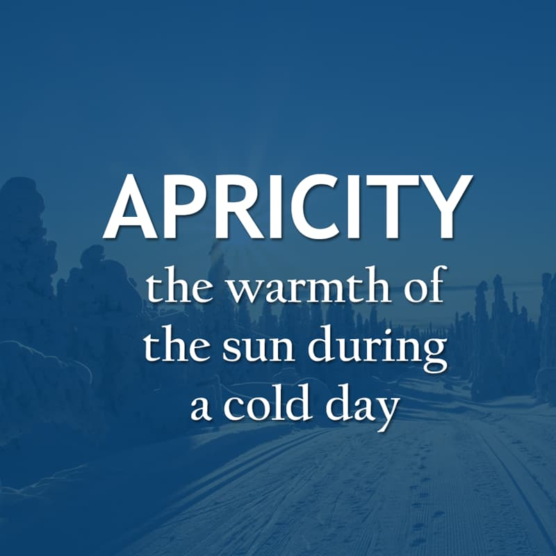 Culture Story: The warmth of the sun during a cold day - APRICITY