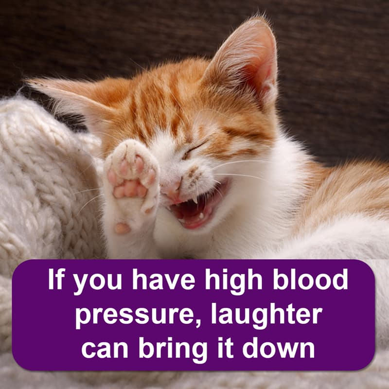 Science Story: If you have high blood pressure, laughter can bring it down