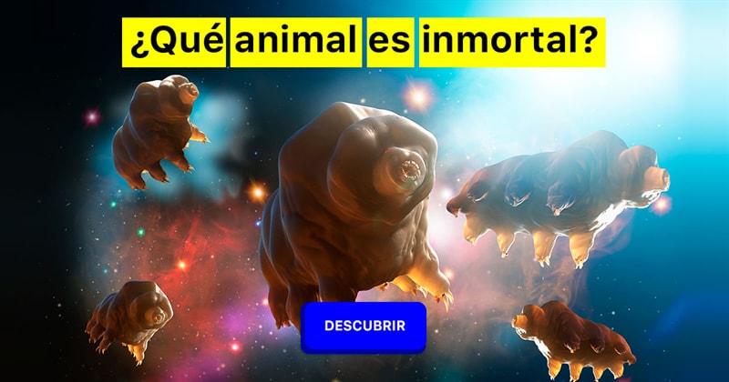 Сiencia Historia: ¿Qué animal es inmortal?